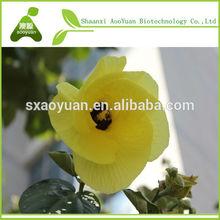 Natural hibisco / Hibiscus Extract / extrato da flor do Hibiscus 10% antocianidinas