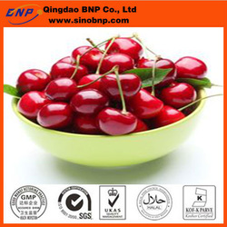 Supply bulk quantity acerola cherry extract/acerola cherry powder/acerola cherry p.e