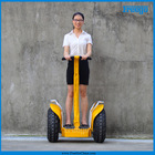 Freego F4 Off-road Lithium Battery Vehicle Segway /Intelligent Self-balance Scooter/Electric Two wheels Motorcycle/
