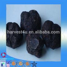Low price wholesale truffle frozen truffles/wild mushrooms