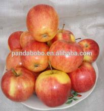 sweet apple fruit red apple fresh apple import apple fruit