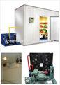 Edifício de armazenamento a frio para a sala de frutas, produtoshortícolas, frutosdomar, carne, frango.