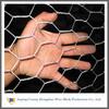 PVC Coated Galvanized Hexagonal Wire Netting (Factory & Exporter)