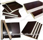 18mm film coated plywood with phenolic glue