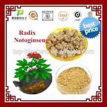 Factory supply 100% Natural Notoginsenoside Panax Notoginseng root Extract Notoginseng Total Saponins