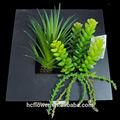 alta qualidade de decoração da parede de plantas