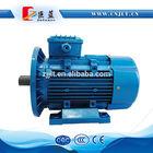 high torque low rpm electric motor