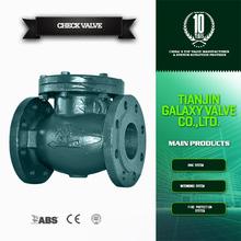 ANSI standard check valve