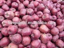 Chinese huaniu apple fruit