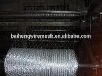 chicken coop hexagonal wire mesh,double twisted hexagonal wire mesh,electro galvanized hexagonal wire mesh
