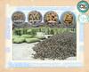 Professional supplier best selling 6-8mm bulk wood pellets