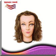 Cosmetology Training Head KO