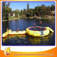 Top quaiity water slide inflatable 2014 wonderful