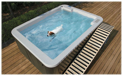 dog grooming bathtub