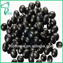 The Healthiest Food Kidney Beans Black Bean