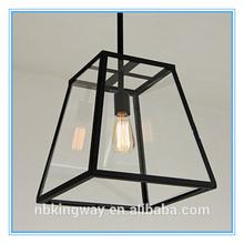 Vintage Glass Iron light Indoor Chandelier Light /Edison bulb fitting fixture