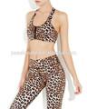 2014 bonita sexy bra bra design plus tamanho thong mulheres leopard sutiã esporte
