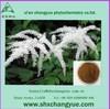 Natural cimicifuga racemosa extract powder
