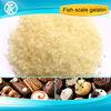 Organic halal fish gelatin powder