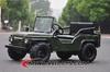 X'mas selling 110cc mini jeep cars