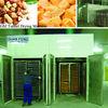 tunnel dryer / dried fruits machine