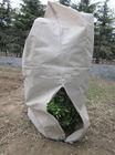 Mesh Plant Cover Polypropylene Fabric/PP non woven fabric
