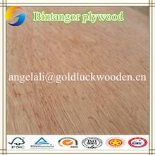 Bintangor commercial home depot plywood