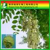 Organic food grade quercetin powder quercetin 98%