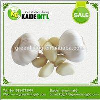 Garlic In Organic Vegetables (Low Price)