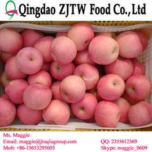 Fresh red fuji apple fresh apple wholesale