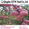 Iran apples exporter custard apple fruit