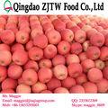 venta caliente natillas de frutas de manzana fuji apple