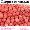 Hot sale custard apple fruit fuji apple