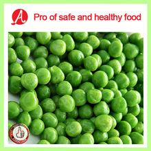 High Quality Frozen Green Peas on Hot Sale