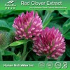 Halal&Kosher Red Clover Isoflavone Powder/Red Clover Powder Extracts/Isoflavone Red Clover P.E.