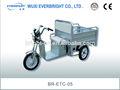 Triciclo de carga eléctrica, batería operado para triciclo de carga, eléctrico de tres ruedas de la motocicleta