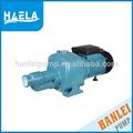 泰hanlei2hpdp505低電圧電気潜水池ポンプジェット