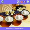 ISO Certificated Fish Collagen body care marine collagen peptide powder