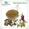 Black Cohosh Extract/ Black Cohosh P.e/triterpenoid Saponins 2.5%-20%,Hplc