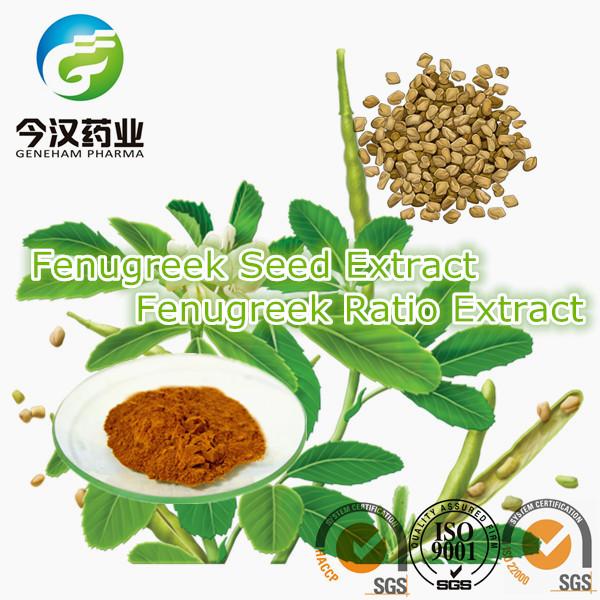 Herbal medicine manufacturer in lahore