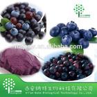 Manufacturer Supply High Quality Acai berry Powder/Acai berry Extract 10:1