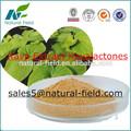 Kavalactone 30% kava root extrait