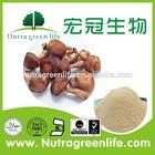 Natural Polysaccharides 10%-50% Shitake Mushroom Extract Powder