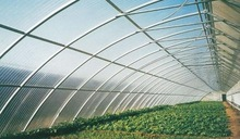 Greenhouse polycarbonate sheet Do-It-Yourself