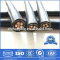 2014 caliente de exportación de bajo voltaje de cu/conductor al con el pe/xlpe de aislamiento de pvc forrado de cobre concéntrico cable