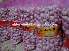 2014 new crop fresh pure white Garlic Peeld Garlic