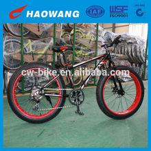 2014 Highe Quality Aluminum 6 Speed Fat Bikes Big Tyre Bike In China
