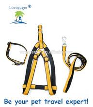 5/8-Inch Reflective Dog Collar leash and harness