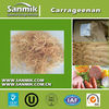 Food additives thickeners carrageenan