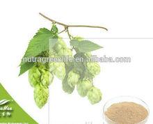 100% Natural Hops Flower powder Extract 5%,90% xanthohumol